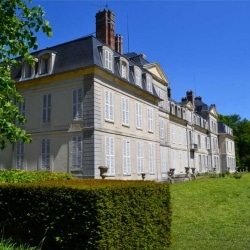Château du Mesnil | Bruno Decelle | arboriste grimpeur élagueur