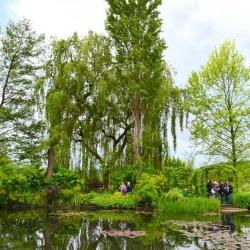 Giverny, Claude Monet | Bruno Decelle | arboriste grimpeur élagueur