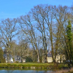Parc Jean-Jacques Rousseau, Ermenonville | Bruno Decelle | arboriste grimpeur élagueur